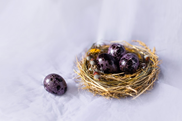 Easter eggs in a nest and with flowers on  blue wall.