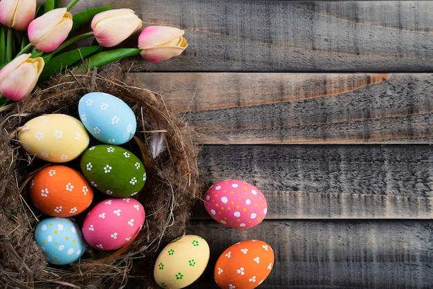 Easter eggs in nest with pink tulips and feather on wooden background.