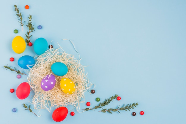 Easter eggs in nest with plant branches on blue table