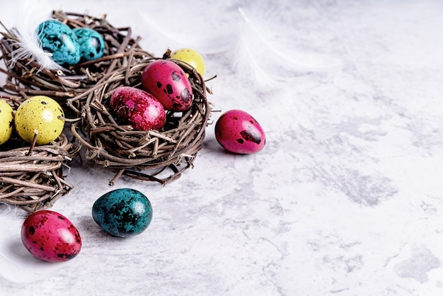Easter holiday concept. colored easter quail eggs with feathers in a nest on gray marble background with copy space