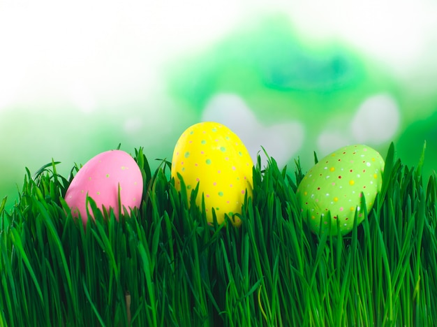 Easter painted eggs on the grass with copy space
