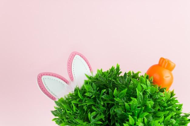 잔디 토끼 귀, 분홍색 배경에 오렌지 당근 부활절 사진. 부활절 배경 봄 날