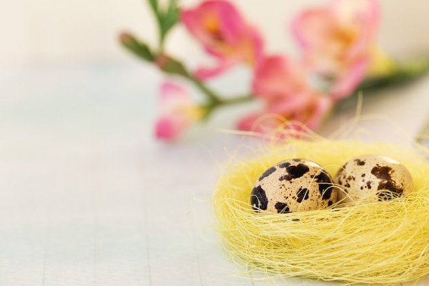巣の中のイースターウズラの卵と青の花。