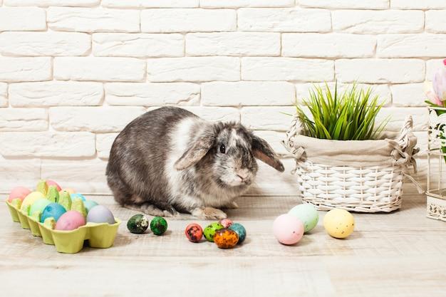 卵と緑の草と家のイースターウサギ