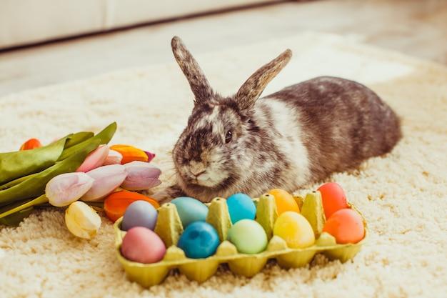カラフルな卵とカーペットの上の部屋のイースターウサギ