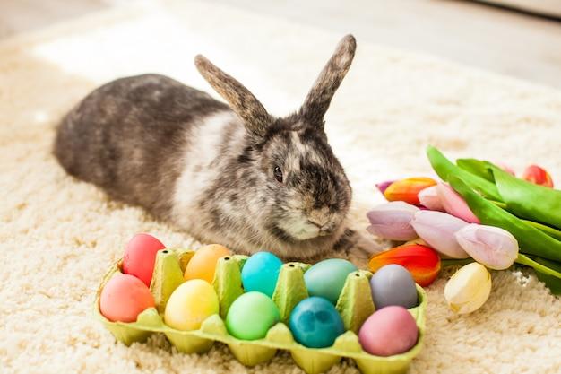 다채로운 계란 카펫에 방에 부활절 토끼