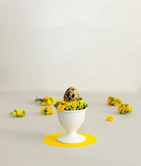 Easter in trendy colors. quail egg with spring flowers on a yellow and gray background with copy space.