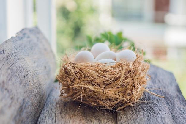 巣のイースターエッグ