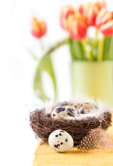 Easter  with quail eggs and tulips