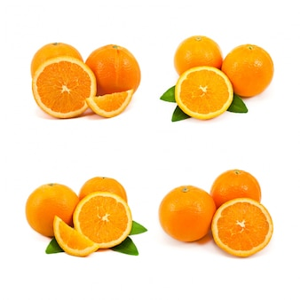 Eating backgrounds white orange object