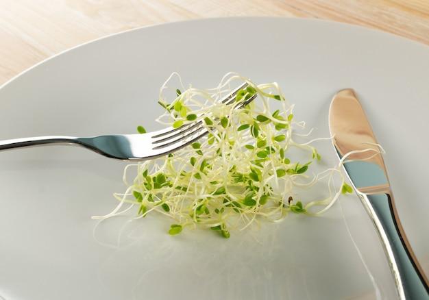 식당에서 포크로 클로버 콩나물을 먹습니다. 원시 다이어트 식품에 대한 발아 야채 씨앗, 마이크로 녹색 건강한 식생활 개념