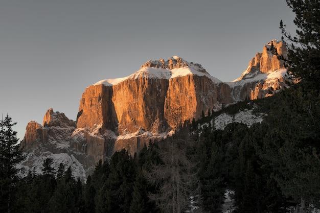 돌로미티에 눈이 덮인 높은 바위 절벽과 전나무 숲의 아름다운 풍경