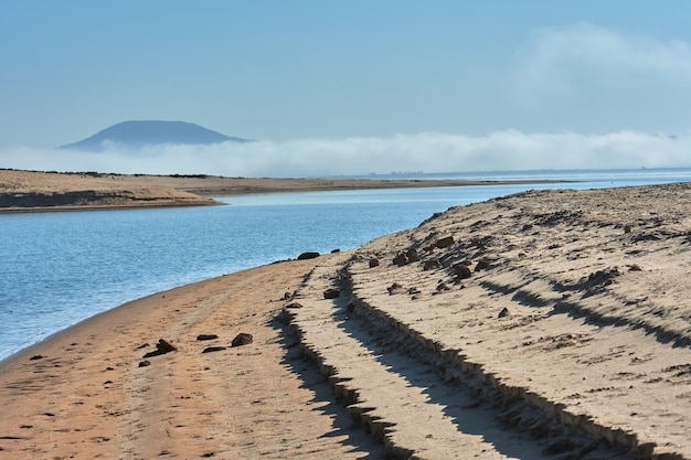 Ebro river swamp with cloud of fog in the background and beach in the foreground
