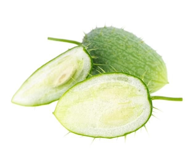 Ecballium isolated on white background ecballium elaterium or wild cucumber pods