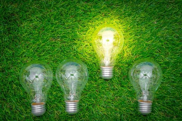 에코 개념-전구는 잔디에서 성장