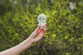 Eco concept with hand holding light bulb