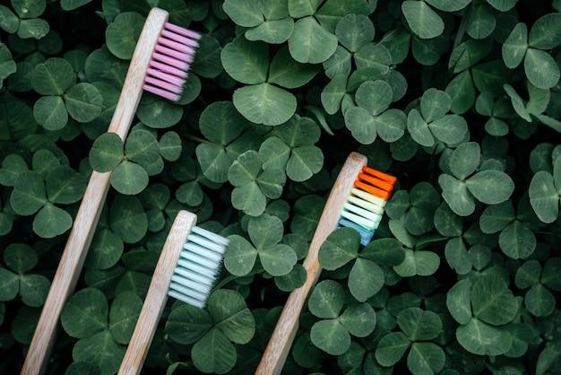 さまざまな色の環境に優しい竹の歯ブラシ、ゼロウェイストのコンセプト、持続可能なライフスタイル、緑のクローバーはカーペットを残します