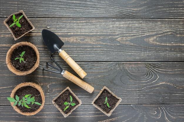 木製の背景、庭のこてと熊手に緑の若い苗トマトと環境にやさしいポット