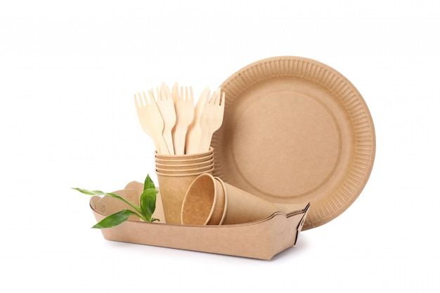 Eco - friendly tableware and plant isolated on white