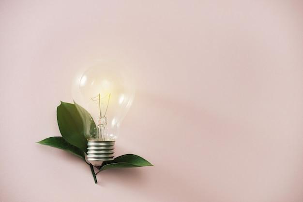 エコグリーンエネルギーコンセプト電球、ピンクの背景に電球の葉。