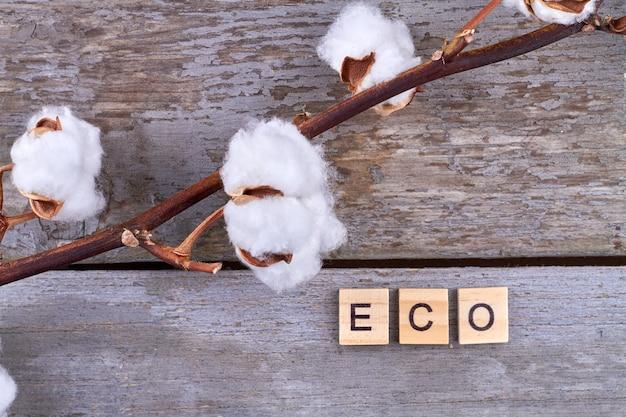 자연에 대한 배려로서의 에코 습관.
