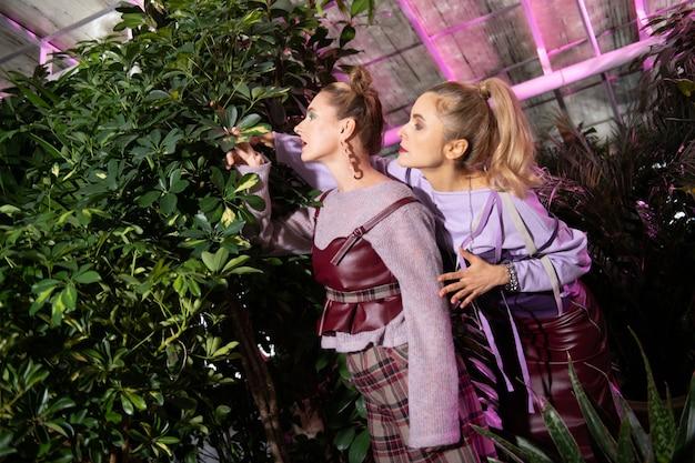 エコライフ。自然を楽しみながら緑の植物を眺める素敵な魅力的な女性