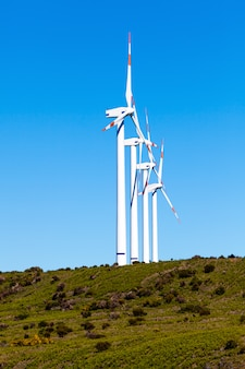Eco power wind turbines landscape