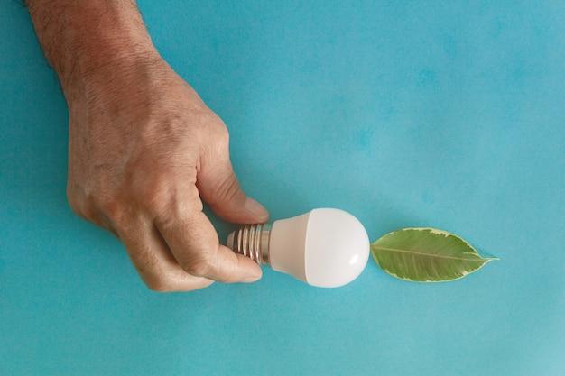 電球と植物の葉を使ったエコロジーとグリーンエネルギーのコンセプト省エネコピースペース