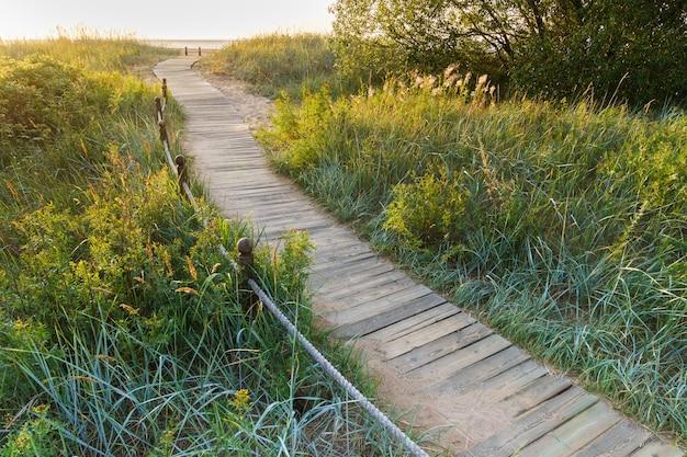 日没時の砂丘ビーチセッジの茂みと草を通る国立公園の生態学的ハイキングトレイル