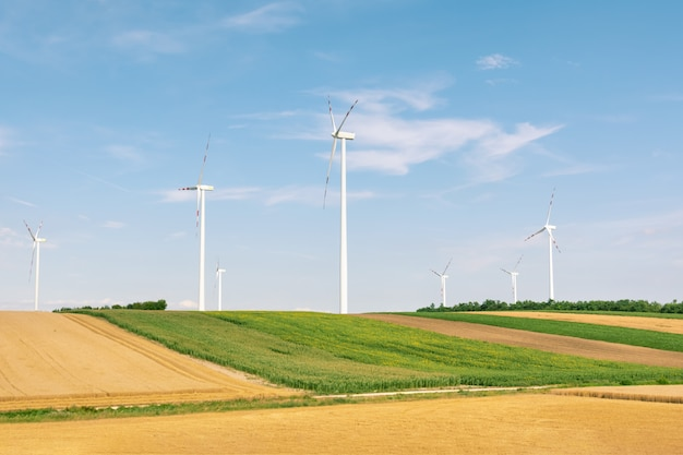 Ecological production of electricity using a wind farm.