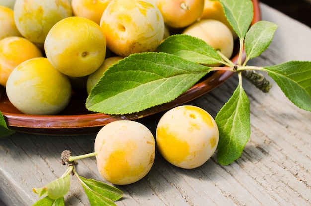 Ecologically grown yellow plums in a bowl.