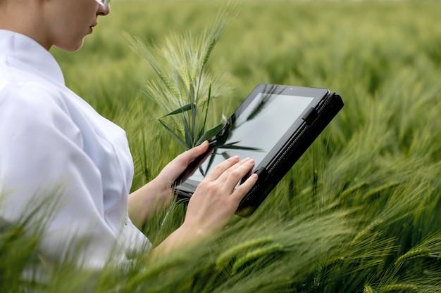 Ученый-эколог в очках стоит в зеленом поле и работает на прозрачном стеклянном экране