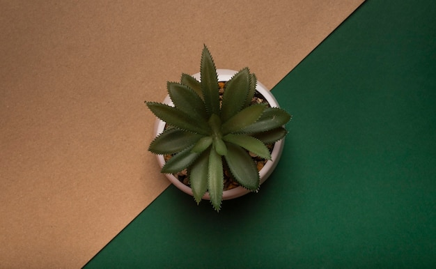 Ecology concept. potted plant over craft and green background, top view.