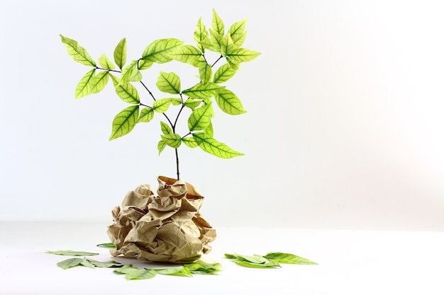 Ecology concept. small plant in recycled paper on white background