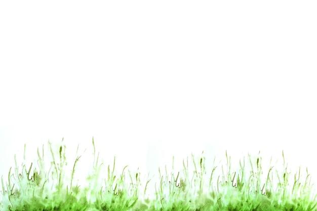 エコロジー、環境、バイオコンセプト。水彩イラスト。緑の草。