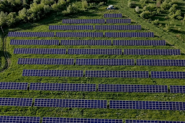 Панели солнечной электростанции экологии в полях зеленой энергии в окружающей среде природы электрических инноваций ландшафта заката.