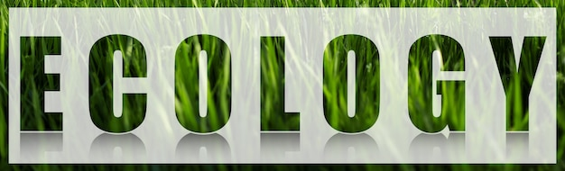 Ecology word on white banner against background of green grass.