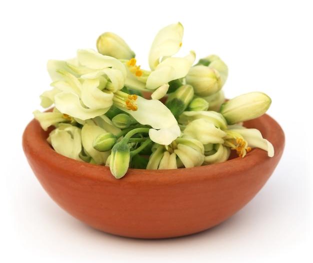 白いbackgrokundの上の茶色のボウルに食用モリンガの花