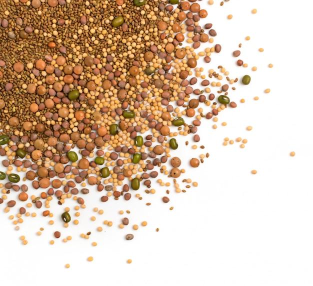 大根、マスタード、レンズ豆、アルファルファの種子、緑豆が白い背景で隔離の食用種子ミックス。健康的な栄養のための種子混合物