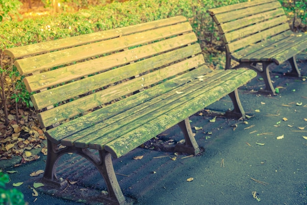 Деревянные скамейки в парке (фильтрованного изображения обрабатываются старинные effe