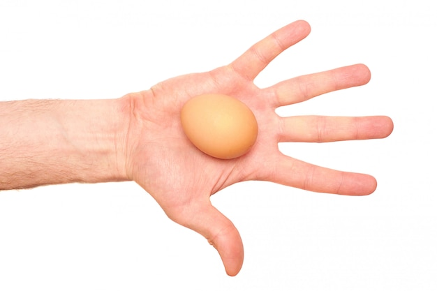 Egg in a hand on white. top view