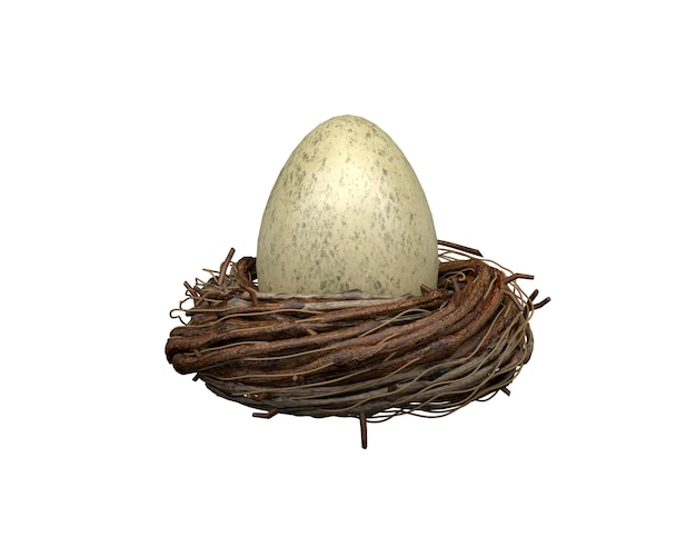 Egg in a nest on a white wall