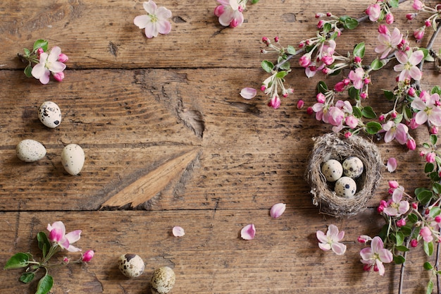 Egg in nest with pink flowers