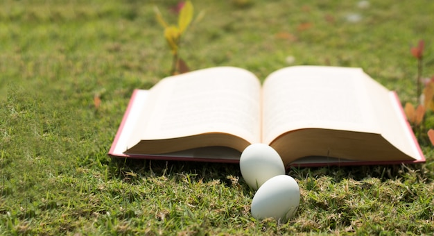 Egg on old book in history of easter concept