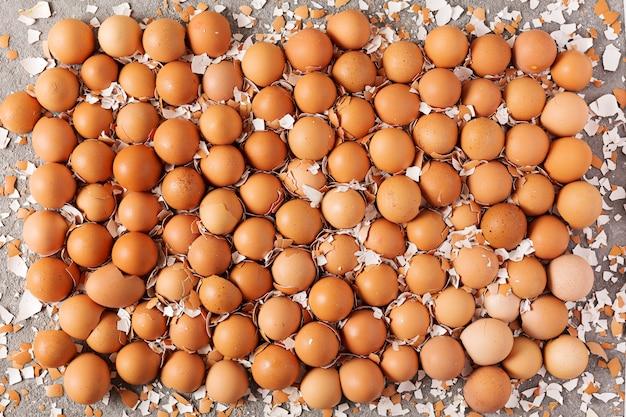 달걀 껍질 질감, 달걀 껍질의 반쪽에서 배경. 평면도