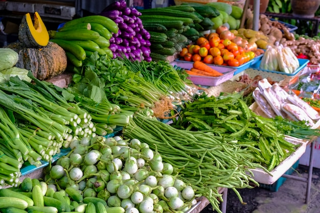 Eggplant, cucumber, long beans, kale, cantonese, chili, cabbage to the market.