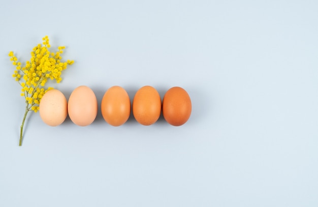 Eggs of different colors in a row on blue with yellow flowers. top view.
