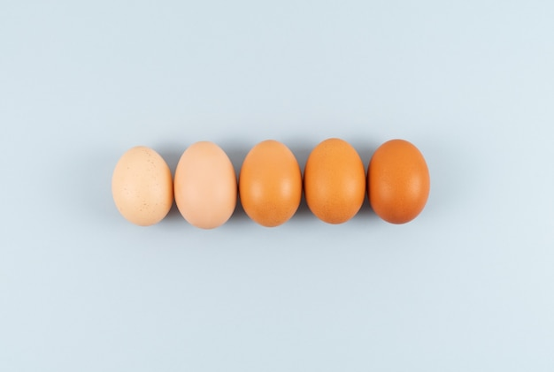 Eggs of different shades of color in a row on a blue background. copy space.