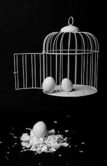 檻から逃げる卵刑務所を出るときの危険の表現