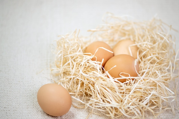 질감 직물의 배경에 둥지에서 계란